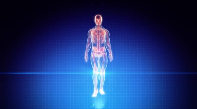 CIAŁO LUDZKIE  z punktu widzenia paradygmatu kwantowego