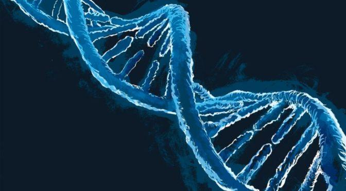 Ludzkie DNA jest biologicznym Internetem-badania rosyjskich naukowców pokazują potężne możliwości jego programowania